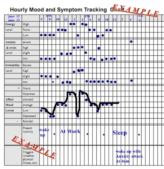 Hourly Mood And Symptom Chart Pennsylvania Echoes